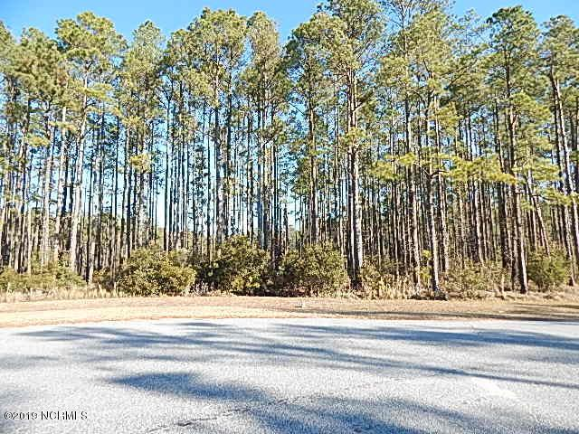 Lot 59 W Dowry Creek Drive, Belhaven, NC 27810 (MLS #100144931) :: Century 21 Sweyer & Associates