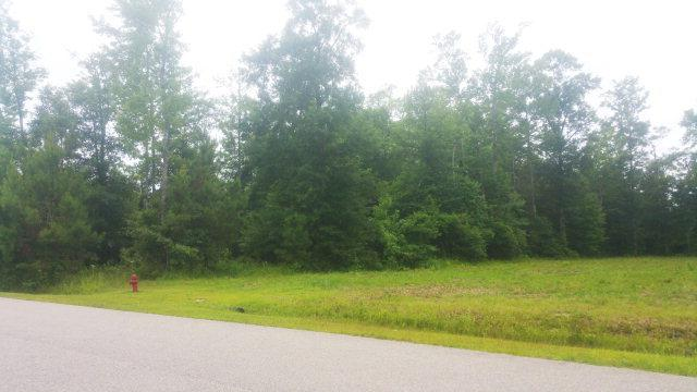 Lot 4 Bowspirit Place, Bath, NC 27808 (MLS #100161477) :: Courtney Carter Homes