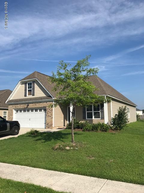 217 Seville Street, Jacksonville, NC 28546 (MLS #100174375) :: Lynda Haraway Group Real Estate