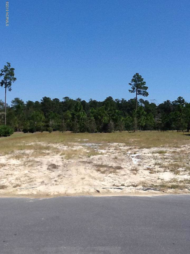 3006 Pine Bloom Way - Photo 1