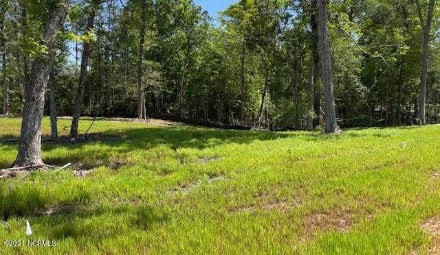 Lot 43 Starkey Creek Drive, Peletier, NC 28584 (MLS #100272476) :: David Cummings Real Estate Team