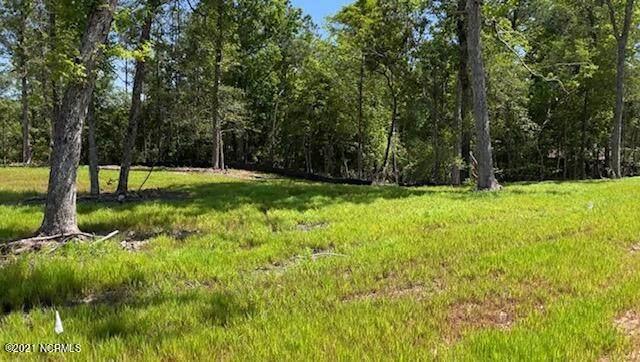 Lot 47 Starkey Creek Drive, Peletier, NC 28584 (MLS #100272481) :: David Cummings Real Estate Team