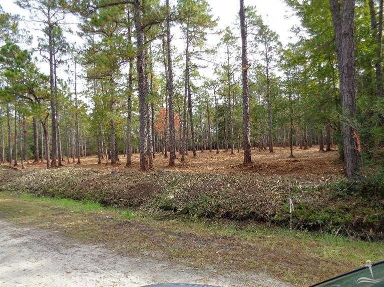 Address Not Published, Southport, NC 28461 (MLS #20677733) :: Century 21 Sweyer & Associates