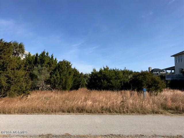 11 Black Skimmer Trail - Photo 1