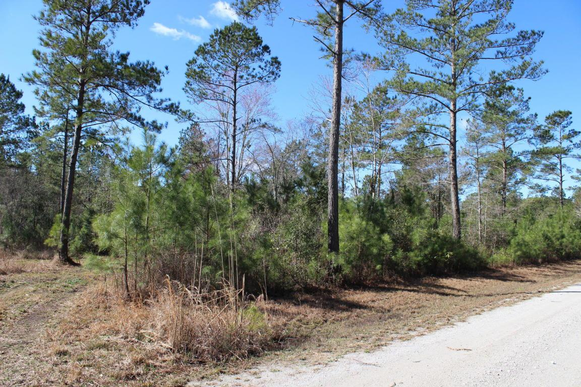 Lot 3 Chestnut Oak Drive, Ash, NC 28420 (MLS #20690809) :: Century 21 Sweyer & Associates