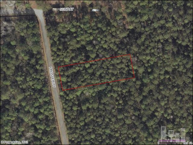 5420 Prosperity Lane, Castle Hayne, NC 28429 (MLS #30481400) :: The Keith Beatty Team