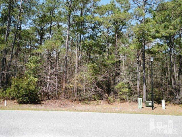 200 Seascape Drive, Sneads Ferry, NC 28460 (MLS #30504460) :: Century 21 Sweyer & Associates
