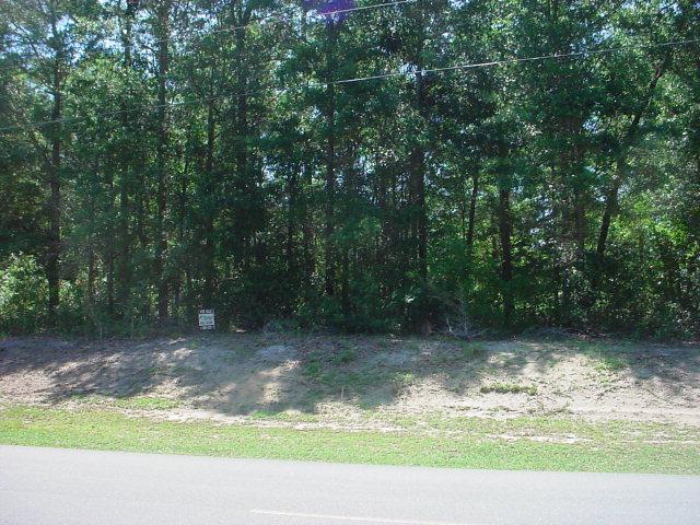 778 Chadwick Shores Drive - Photo 1