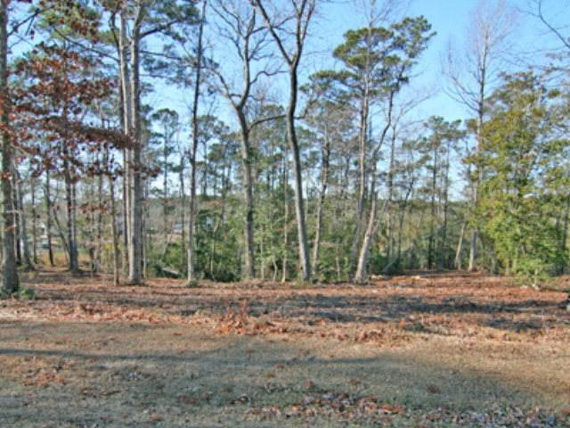 205 Creek View Circle, Sneads Ferry, NC 28460 (MLS #40093225) :: Thirty 4 North Properties Group