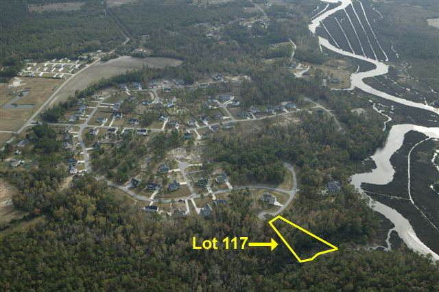 119 Mariners Circle, Sneads Ferry, NC 28460 (MLS #40095048) :: Thirty 4 North Properties Group