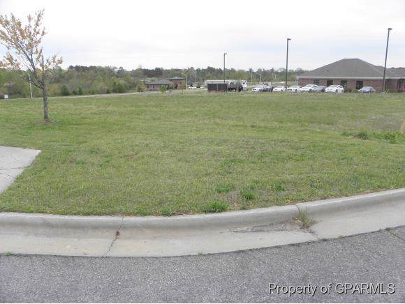 Lot 6-B Hwy 125 Lane - Photo 1