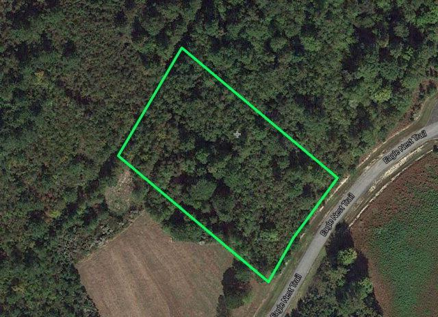 Lot 85 Eagle Nest Trail, Blounts Creek, NC 27814 (MLS #70033039) :: Castro Real Estate Team