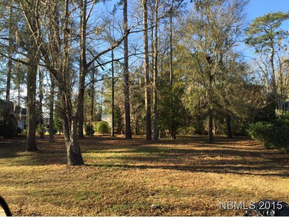 195 Hawks Pond Road, New Bern, NC 28562 (MLS #90082989) :: The Oceanaire Realty