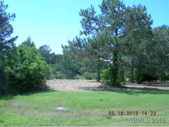 246 SW Silver Acres Road SW, Oriental, NC 28556 (MLS #90099280) :: RE/MAX Essential