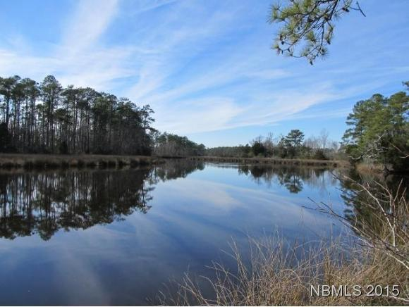 134 Peninsula Drive, Oriental, NC 28571 (MLS #90099786) :: The Keith Beatty Team