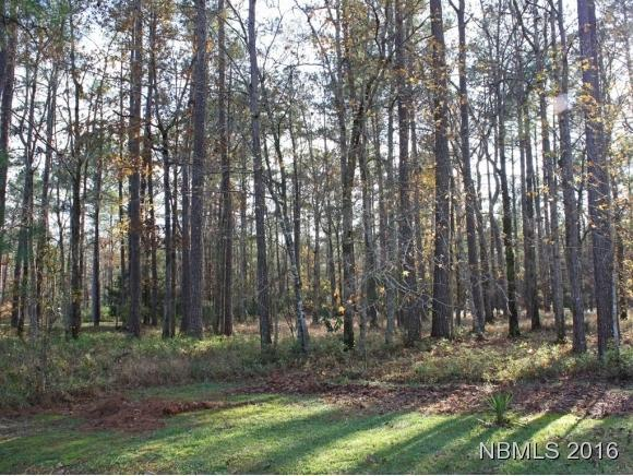109 Spinnaker Point Road, Oriental, NC 28571 (MLS #90102755) :: Century 21 Sweyer & Associates