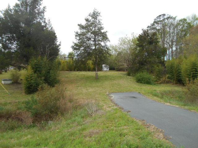 Lot 73 Lot 73 Thomas A Betts Parkway - Photo 1