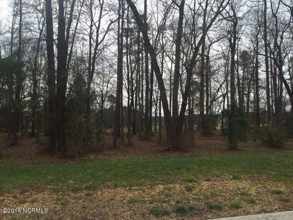 113 Sycamore Lakes Drive, Wallace, NC 28466 (MLS #100002712) :: Century 21 Sweyer & Associates