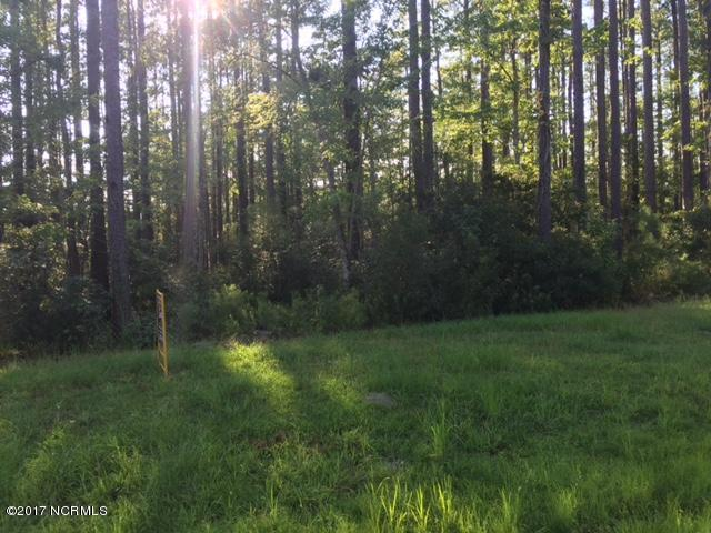 Lot 14 Satterthwaite Lane, Belhaven, NC 27810 (MLS #100078862) :: Terri Alphin Smith & Co.