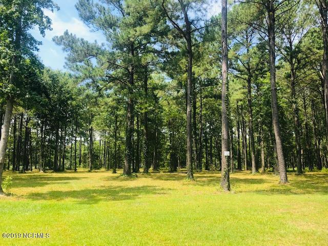 132 Southern Plantation Drive S, Oriental, NC 28571 (MLS #100143843) :: Vance Young and Associates
