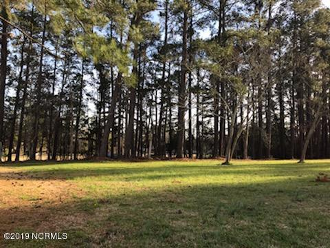 Lot 2 Kingfisher Drive, Blounts Creek, NC 27814 (MLS #100154922) :: Courtney Carter Homes