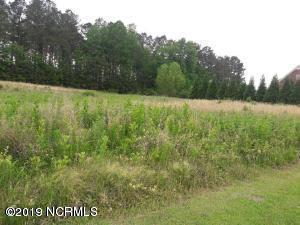 7112 Landrush Road, Sims, NC 27880 (MLS #100165053) :: Courtney Carter Homes