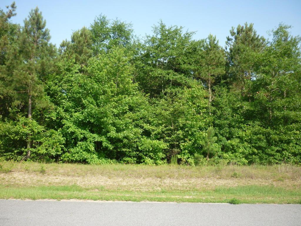 Lot 12 Deer Pointe Drive - Photo 1