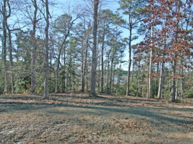 203 Creek View Circle, Sneads Ferry, NC 28460 (MLS #40093226) :: Thirty 4 North Properties Group