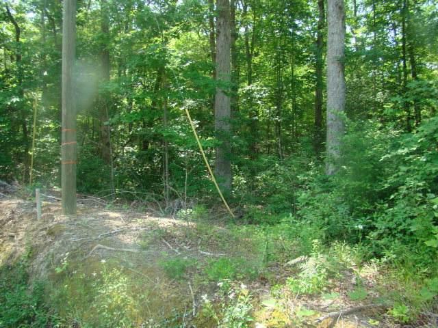 Lot 10 Birch Drive, Blounts Creek, NC 27814 (MLS #70026686) :: Stancill Realty Group