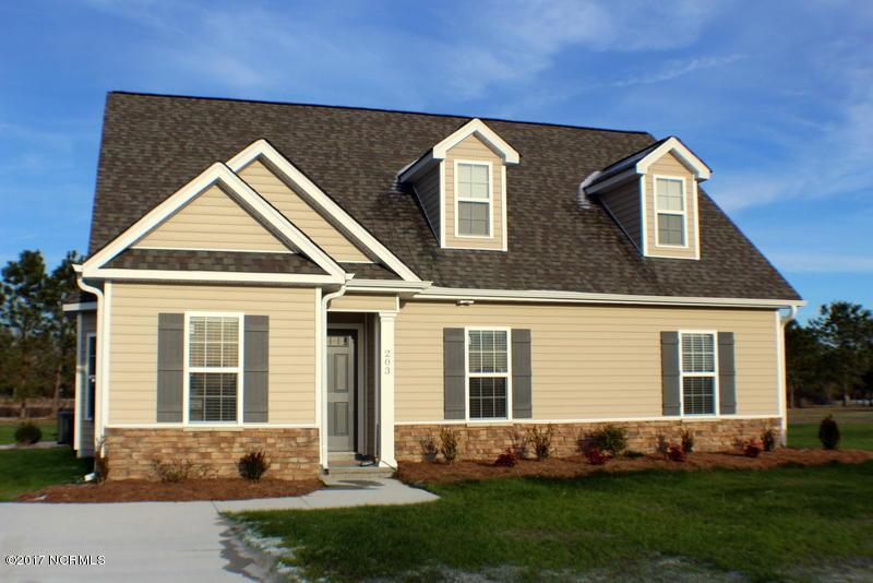 203 Asheberne Drive, Washington, NC 27889 (MLS #100021292) :: Century 21 Sweyer & Associates