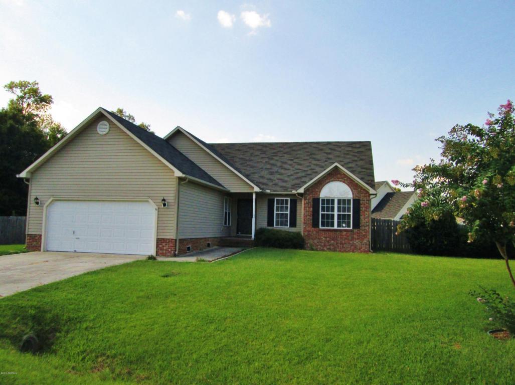 204 Bluff Ridge Court, Jacksonville, NC 28540 (MLS #100022957) :: Century 21 Sweyer & Associates