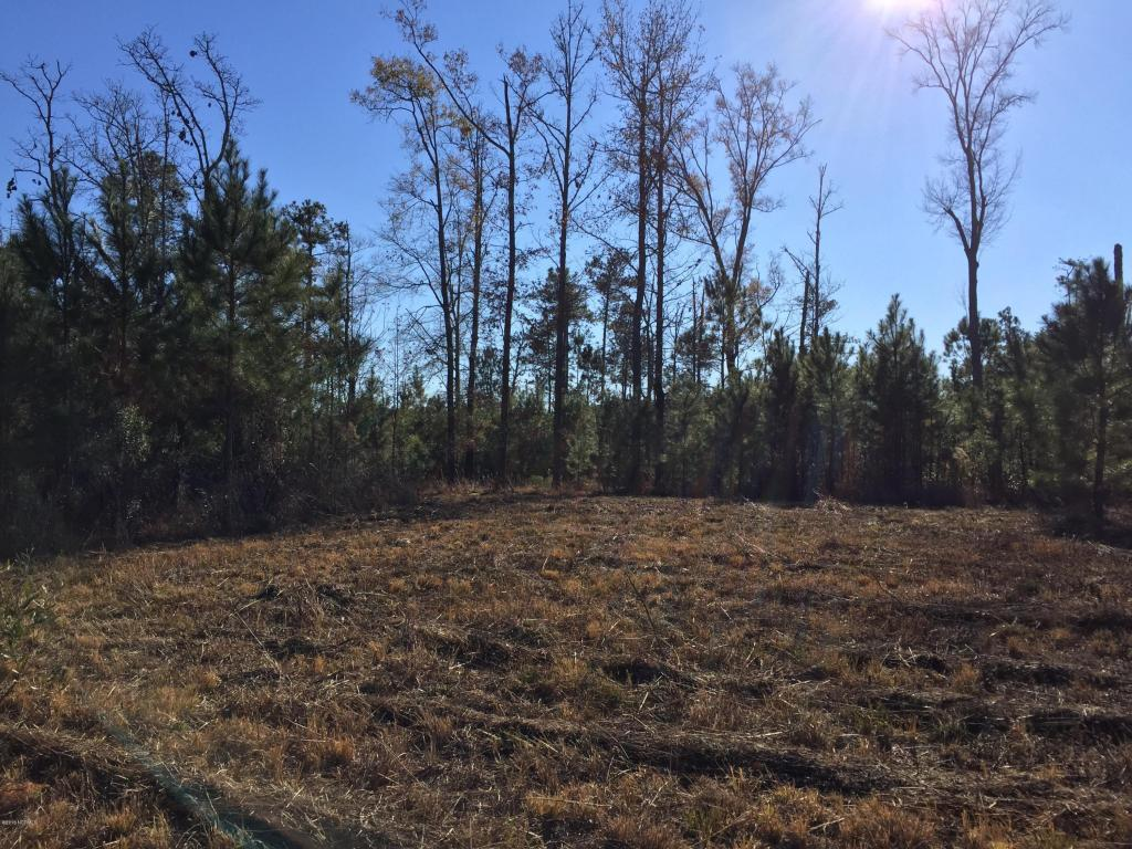 Lot 20 Bailey Pointe Drive, Belhaven, NC 27810 (MLS #100028559) :: Century 21 Sweyer & Associates