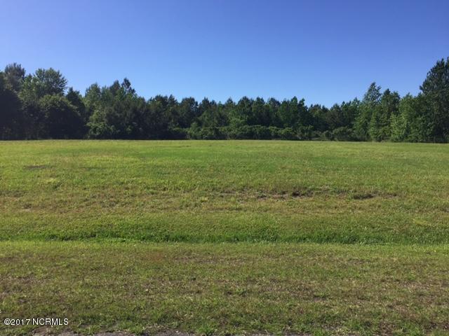Lot 86 Eagle Nest Trail, Blounts Creek, NC 27814 (MLS #100054695) :: Century 21 Sweyer & Associates