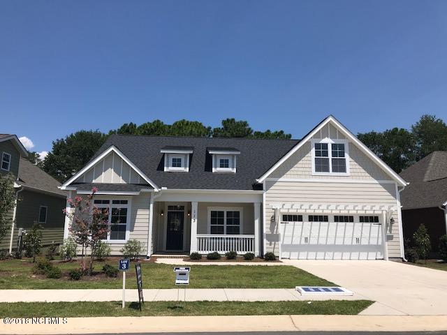113 Helmsman Drive, Wilmington, NC 28412 (MLS #100102746) :: Century 21 Sweyer & Associates