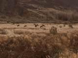 31 Douglas Creek Rd - Photo 5