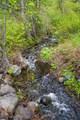 3750 Camas Creek Rd - Photo 33