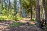 16403 Lake Wenatchee Hwy - Photo 46