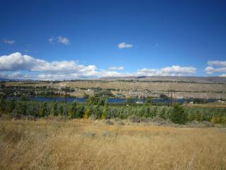 3020/3030 Riverview Ln, Malaga, WA 98828 (MLS #712580) :: Nick McLean Real Estate Group