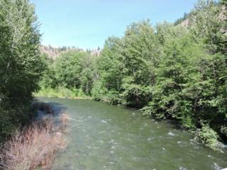 NNA Entiat River Rd, Entiat, WA 98822 (MLS #712658) :: Nick McLean Real Estate Group