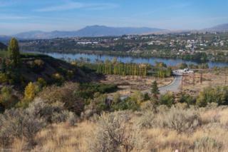 2128 Mceldowney Rd, Malaga, WA 98828 (MLS #712661) :: Nick McLean Real Estate Group