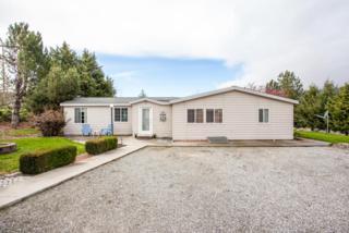 22058 Us-97, Orondo, WA 98843 (MLS #712774) :: Nick McLean Real Estate Group
