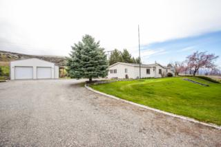 22058 Us-97, Orondo, WA 98843 (MLS #712776) :: Nick McLean Real Estate Group