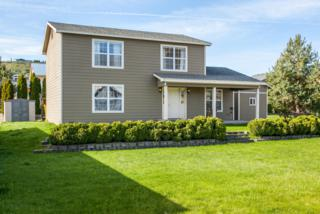 170 Lakeview Ave, Orondo, WA 98843 (MLS #712941) :: Nick McLean Real Estate Group