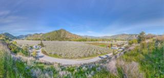 NNA Yaksum Canyon Rd., Cashmere, WA 98815 (MLS #713003) :: Nick McLean Real Estate Group