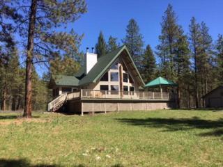12310 Primitive Park Rd, Leavenworth, WA 98826 (MLS #713089) :: Nick McLean Real Estate Group