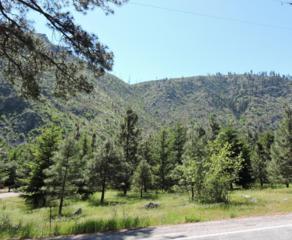 13514 Entiat River Rd, Entiat, WA 98822 (MLS #713105) :: Nick McLean Real Estate Group