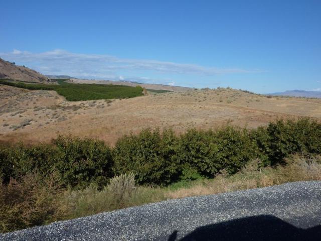 NNA Crown Lane, Malaga, WA 98828 (MLS #711680) :: Nick McLean Real Estate Group