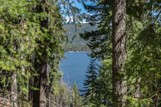 15889 Cedar Brae Rd, Leavenworth, WA 98826 (MLS #713020) :: Nick McLean Real Estate Group