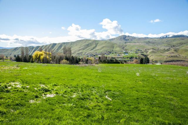 159 Acres Ln., Wenatchee, WA 98801 (MLS #713062) :: Nick McLean Real Estate Group