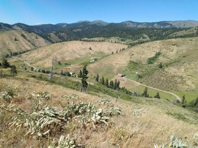 NNA E. Fork Olalla Canyon Rd, Cashmere, WA 98815 (MLS #713527) :: Nick McLean Real Estate Group